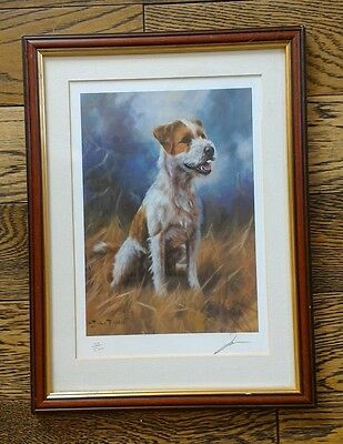 PARSON JACK RUSSELL TERRIER DOG ART LIMITED EDITION PRINT - John Trickett