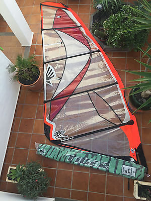 Ezzy 6.3 Tiger wave sail