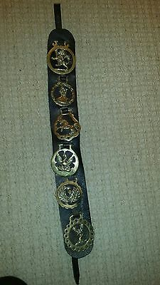 Horse Brasses on a Leather Martingale