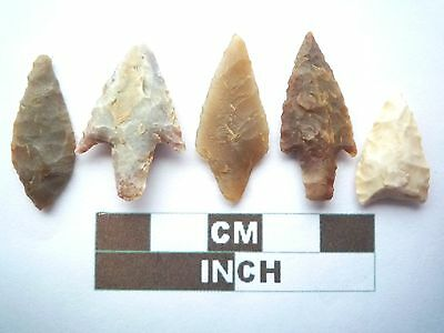 Neolithic Arrowheads x5, High Quality Selection of Styles - 4000BC - (X051)