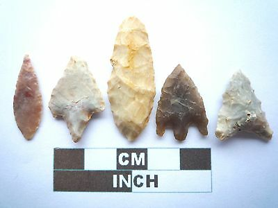 Neolithic Arrowheads x5, High Quality Selection of Styles - 4000BC - (W011)