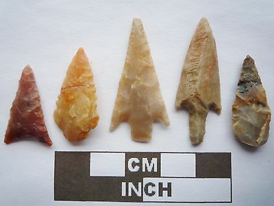 Neolithic Arrowheads x5, High Quality Selection of Styles - 4000BC - (Q122)