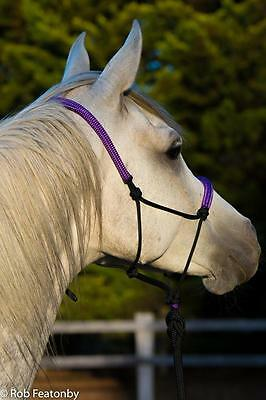 Beautiful Padded Purple and black rope halter and lead set PONY COB FULL XL