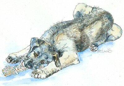 IRISH WOLFHOUND Original Watercolor on Ink Print Matted 11x14 Ready to Frame