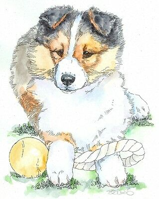 SHETLAND SHEEPDOG Original Watercolor on Ink Print Matted 11x14 Ready to Frame