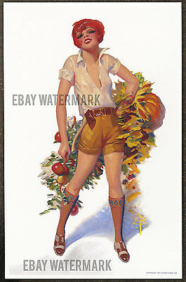 1920's Enoch Bolles Authentic Pin-Up Poster Art Print 11x17 We Have No Bananas