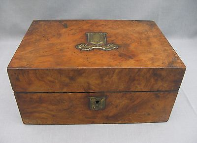 A beautiful 19th Century Walnut box with wonderful brass escutcheons