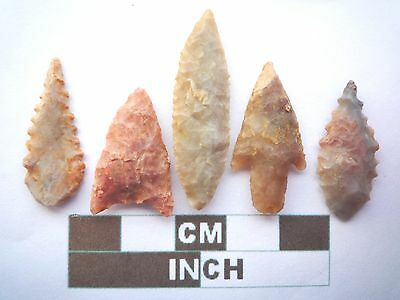 Neolithic Arrowheads x5, High Quality Selection of Styles - 4000BC - (X068)