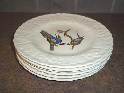 ALFRED MEAKIN ENGLAND BIRDS OF AMERICA 8 3/4 inch lunch plates, set of 6