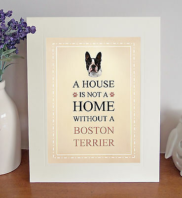 "Boston Terrier 10"" x 8"" Free Standing A HOUSE IS NOT A HOME Picture Lovely Gift"