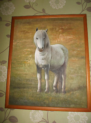 original signed oil painting of pony (framed canvas)
