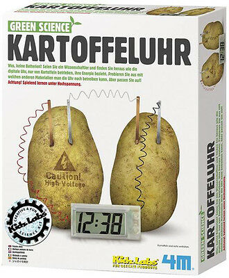 Green Science Kartoffeluhr