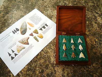 9 x Quality Neolithic Arrowheads in Wooden Box - 4000BC (0030)