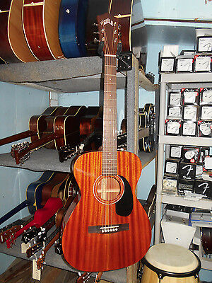 Guild GAD Series M-120 Acoustic Steel String Guitar w/ Hard Shell Case