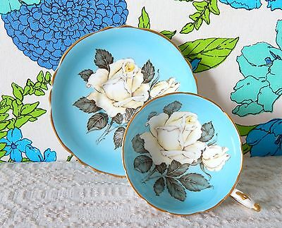 Vintage PARAGON White Cabbage Rose Light Blue Footed Cup & Saucer Set-R1390