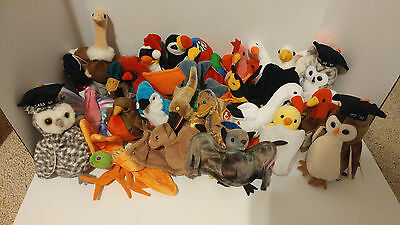 Lot of 27 Beanie Babies-Birds Jabber Puffer Strut Flitter Stretch Scoop Zero
