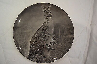 VINTAGE EARLY 1st EDITION ROYAL DOULTON KANGAROO & JOEY PLATE D6412 50's 60's