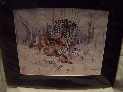 Large Winter Wolf Wolves Matted Print New In Plastic Signed Adkins 20 In By 16