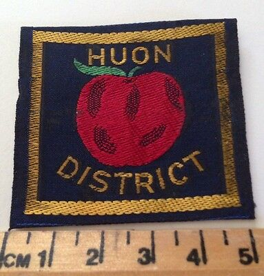 Vintage Huon District Scout Badge
