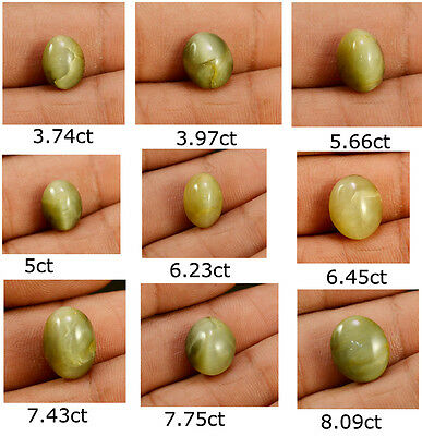 3.74ct-8.09ct Natural Fine Gem Quality Cats Eye Oval Shape Loose Gemstone