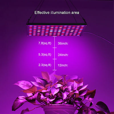PopularGrow Newest Design 45W LED Grow Light Panel 169 PCS For Commercial Plant