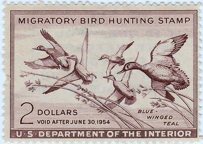 """1953-1954 Migratory bird Hunting stamp. Unsigned"""" Duck Stamp"""" Beautiful"""