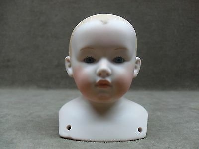 Heubach Germany Boy Shoulder Head Dorothy Smith