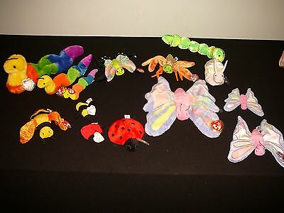 """14~Gently Used Beanie Babies """"flying And Ground Life"""" 8"""" & 5 1/2""""(Very Nice)!!!"""