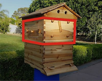 USA Auto Flow Frame Honey Super Box + 7 Combs for 10-Frame Langstroth Beehive
