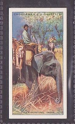 """From 25 """"Sports & Games in Many Lands"""" by Churchman 1929 #13 Tiger hunting India"""