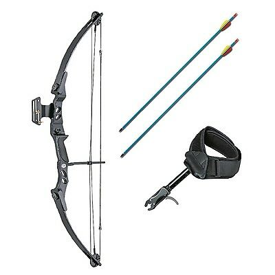 Archery Compound Hunting Bow and Arrow 55lb Package Arrows Sight Release Aid