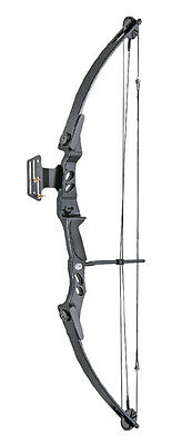 Lynx Archery Hunting Compound Bow Set Kit 55lbs Pack Pin Sight & Rest