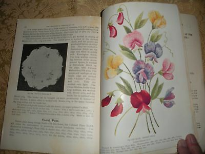 1900 embroidery patterns lessons flower plates brained & armstrong conn.