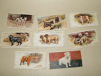 Players   Cigarette Cards Dogs