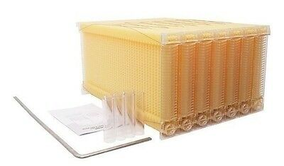 4 Auto Flow Frames Honey Combs Only 10-Frame Langstroth Beehive