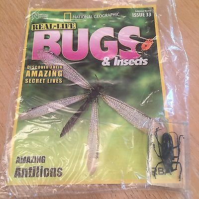 Bugs And Insects Issue 33