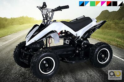 Electric Quad Miniquad Children's Atv Racer 800 Watt Pocket Child Bike