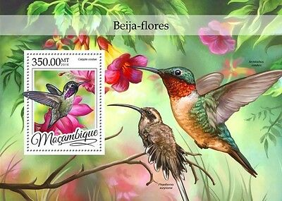 Z08 IMPERFORATED MOZ16308b MOZAMBIQUE 2016 Colibri MNH