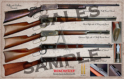 Winchester Lever Action Model of 1894 Variants Poster 11 x 17