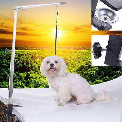 Pet Dog Foldable Grooming Arm Bracket Adjustable Clamp Loop for The Table NEW