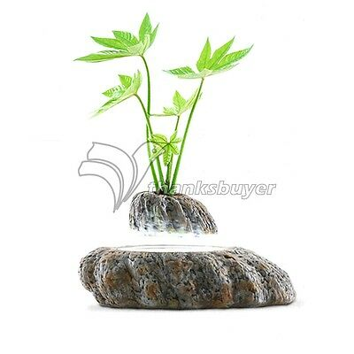 Magnetic Levitation Potted Plant Floating Decoration Green Miniascape for Gift
