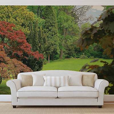 WALL MURAL PHOTO WALLPAPER XXL  Glade in Woodland (4-004WS)