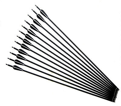 "31"" Archery Fletched Carbon Arrows Hunting Spine500 for Recurve Compound Bow"