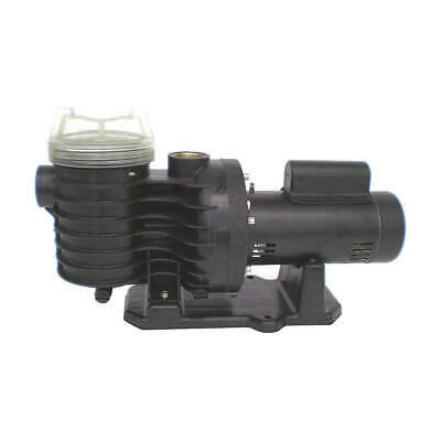 DAYTON Pool Pump,2 HP,3450,230V/115, 5PXE6