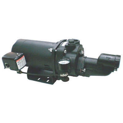 DAYTON 1/2 HP Shallow Well Jet Pump w/o Ejector, 5UXJ9