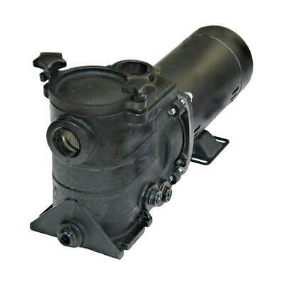 DAYTON Pool Pump,1 HP,3450,115/230V, 5PXC4