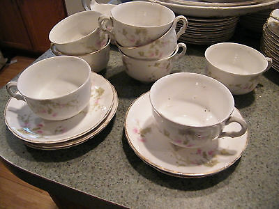 Pope Gosser 2 Cups and Saucers  Delicate Wild Rose Pattern/ all good