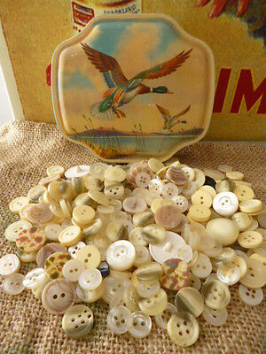 Vintage Horner toffee lolly tin advertising lot antique buttons sewing clothes
