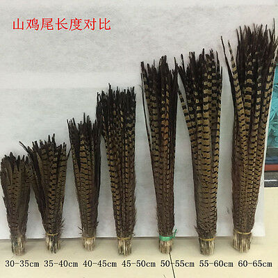 Wholesale! 5-200pcs beautiful natural pheasant tail feathers 25-100cm/10-40inch