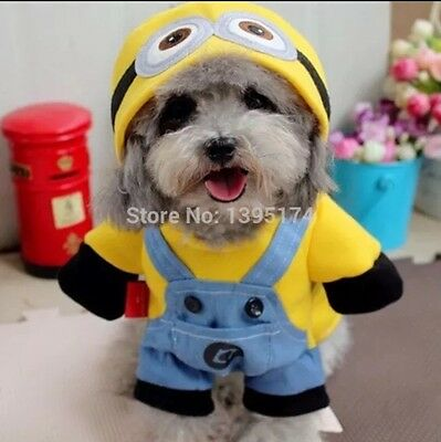 Minions Dog Costume Large